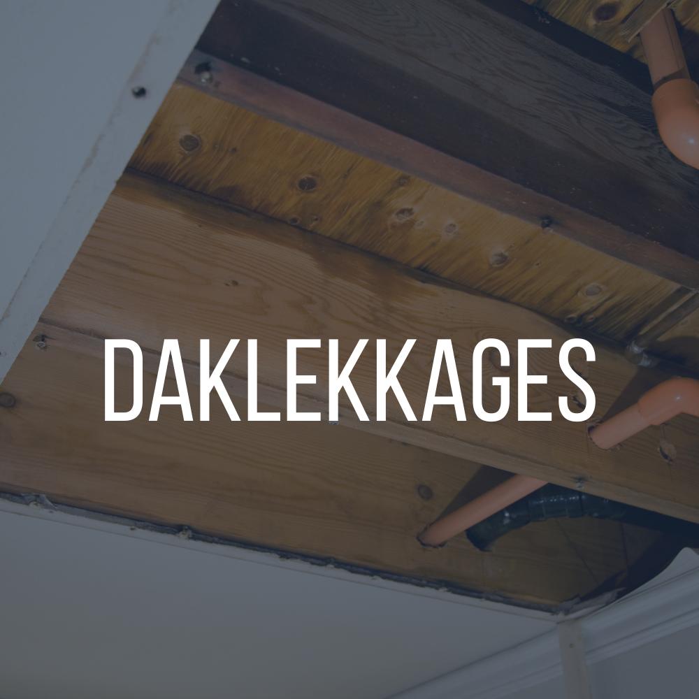 Dakdekkersbedrijf Nederland Dakrenovaties Daklekkages Dakbedekkingen